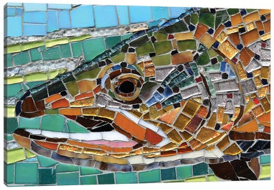 Brown Trout Glass Mosaic Canvas Art Print