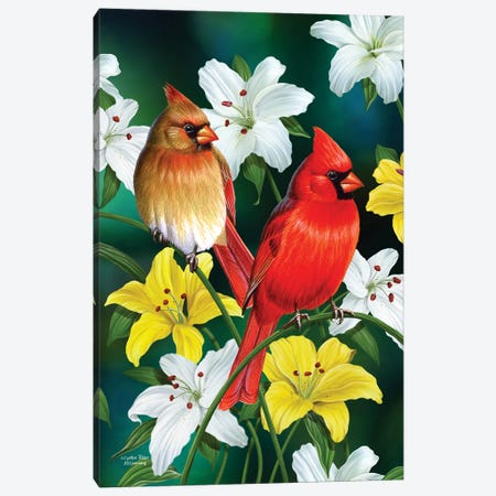 Cardinals Canvas Print #CYT37} by Cynthie Fisher Canvas Wall Art