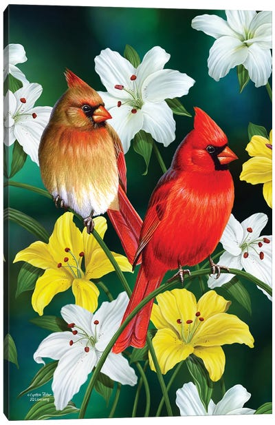 Cardinals Canvas Art Print