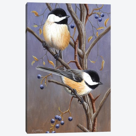 Chickadees With Blk Canvas Print #CYT41} by Cynthie Fisher Canvas Wall Art