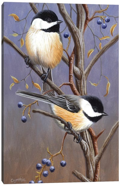 Chickadees With Blk Canvas Art Print