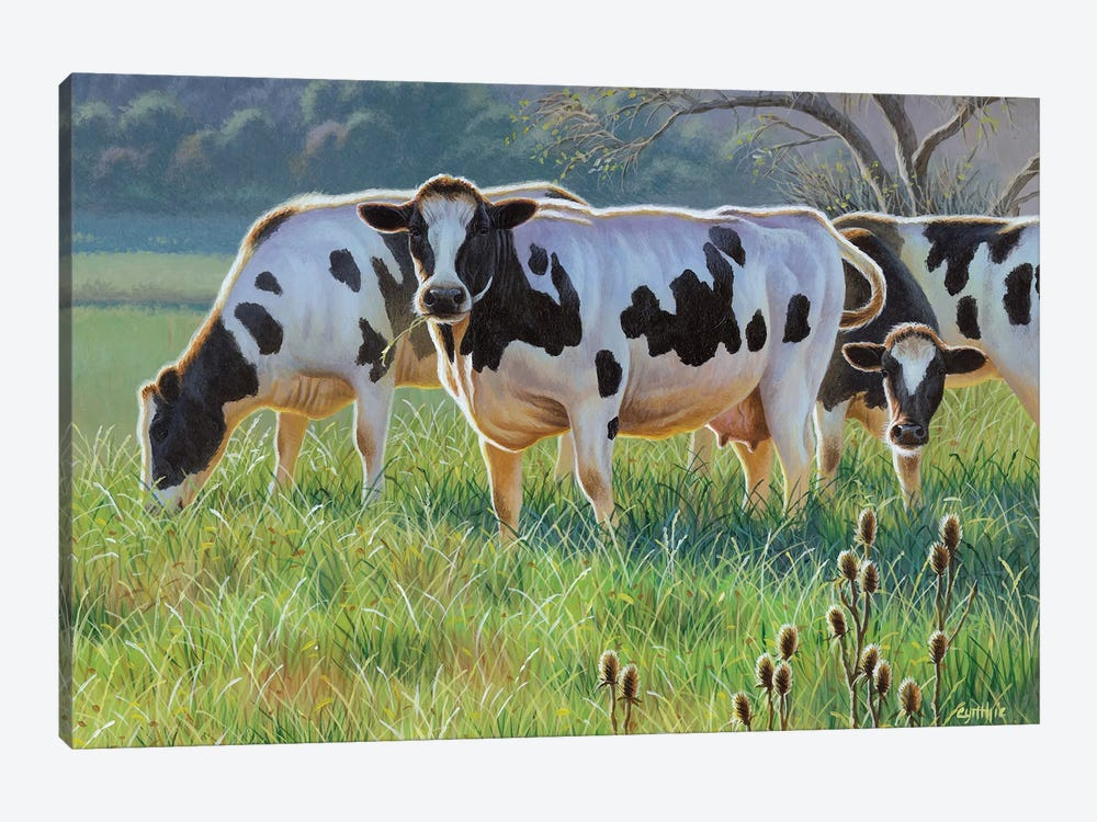 Cows by Cynthie Fisher 1-piece Art Print