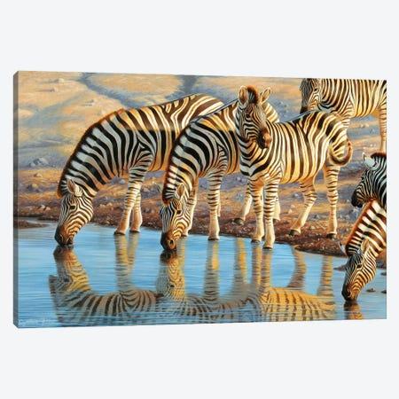 Drinking Zebras Canvas Print #CYT51} by Cynthie Fisher Canvas Art Print