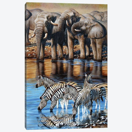 Elephant And Zebras Canvas Print #CYT57} by Cynthie Fisher Canvas Art