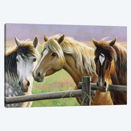 Gossip Fence Canvas Print #CYT82} by Cynthie Fisher Canvas Art