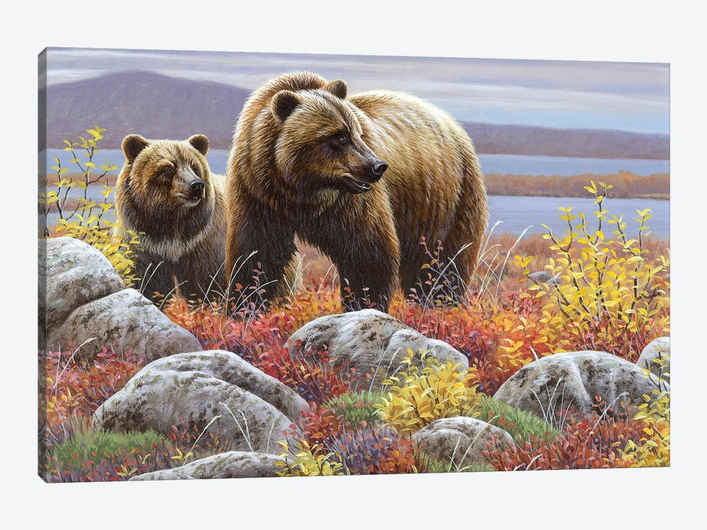 Griz And Cub by Cynthie Fisher 1-piece Canvas Print