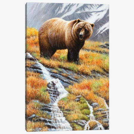 Grizzly At Waterfall Canvas Print #CYT89} by Cynthie Fisher Canvas Art
