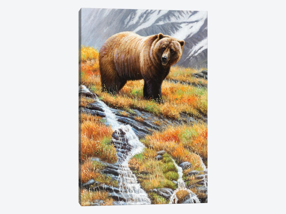 Grizzly At Waterfall by Cynthie Fisher 1-piece Canvas Print
