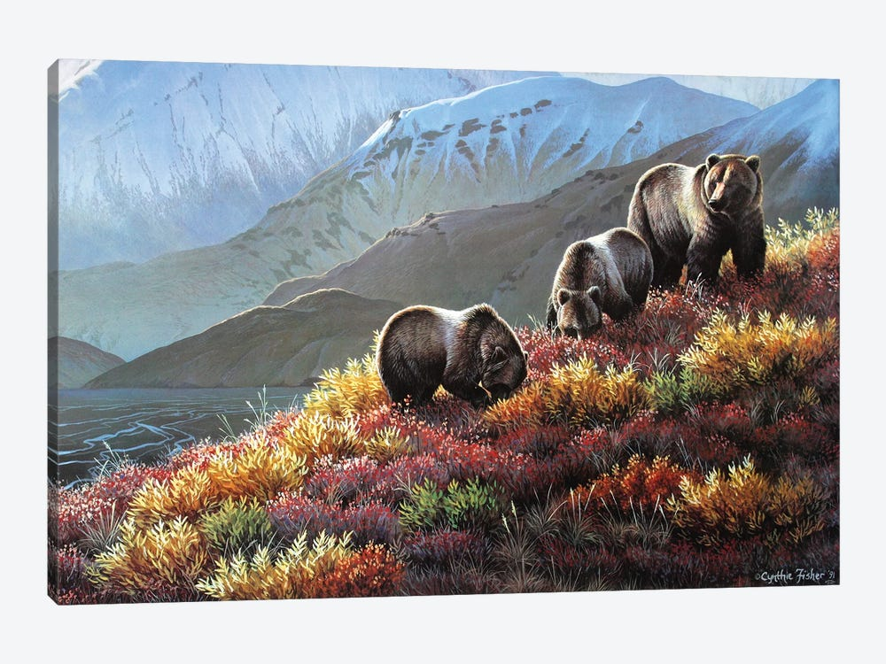 Grizzly Autumn Harvest by Cynthie Fisher 1-piece Canvas Print