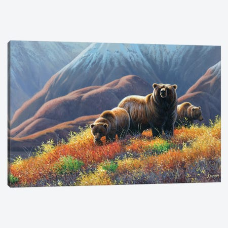 Grizzly Bears Canvas Print #CYT91} by Cynthie Fisher Canvas Print