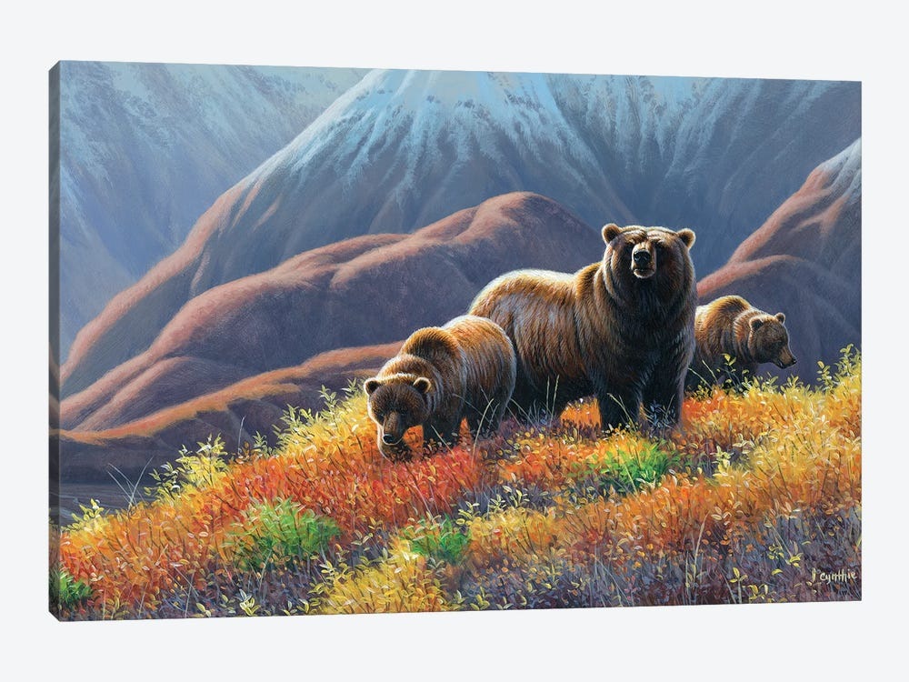 Grizzly Bears by Cynthie Fisher 1-piece Canvas Artwork