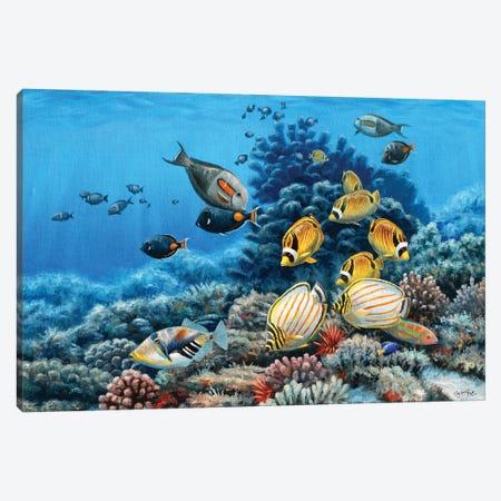 Hawaiian Reef Canvas Print #CYT96} by Cynthie Fisher Canvas Wall Art