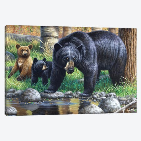 Bear With Cubs Canvas Print #CYT9} by Cynthie Fisher Canvas Art Print