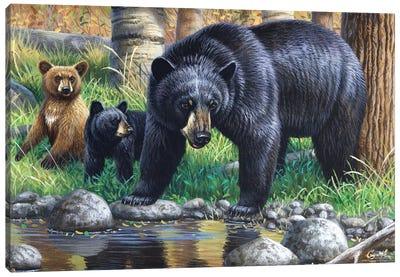 Bear With Cubs Canvas Art Print