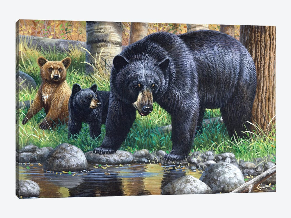 Bear With Cubs by Cynthie Fisher 1-piece Canvas Print