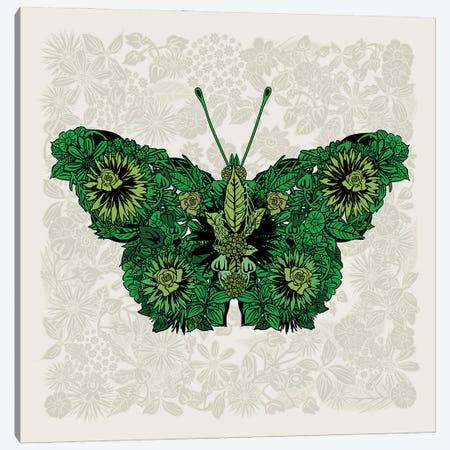 Butterfly Green Canvas Print #CZC126} by Czar Catstick Canvas Art