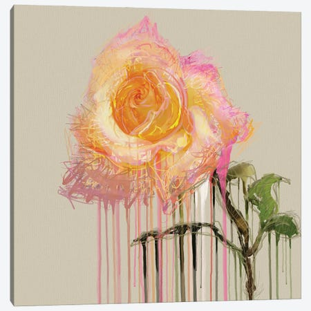 A Rose By Any Other Name (Cream) Canvas Print #CZC1} by Czar Catstick Canvas Artwork