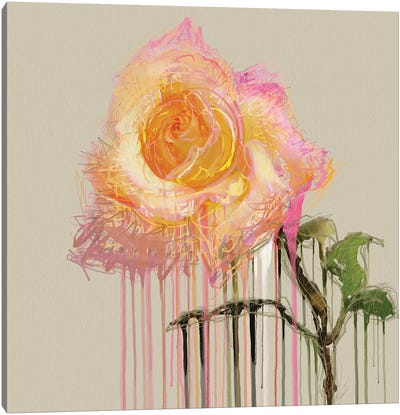 A Rose By Any Other Name (Cream) Canvas Art Print