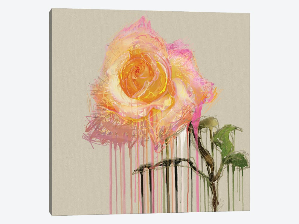 A Rose By Any Other Name (Cream) by Czar Catstick 1-piece Canvas Art