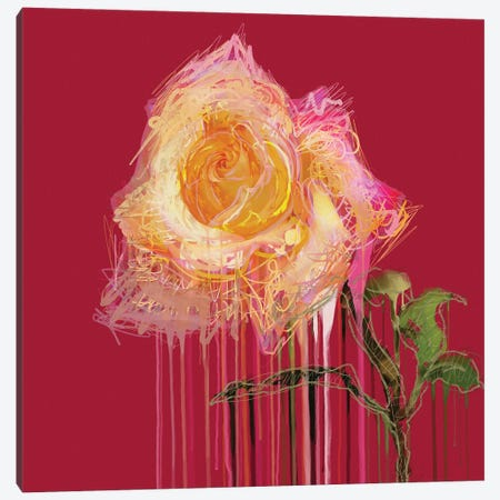 A Rose By Any Other Name (Red) Canvas Print #CZC2} by Czar Catstick Canvas Art