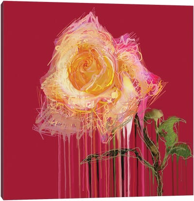 A Rose By Any Other Name (Red) Canvas Art Print