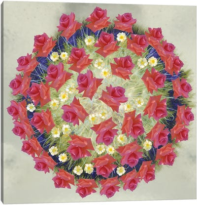 Corona Floris Canvas Art Print