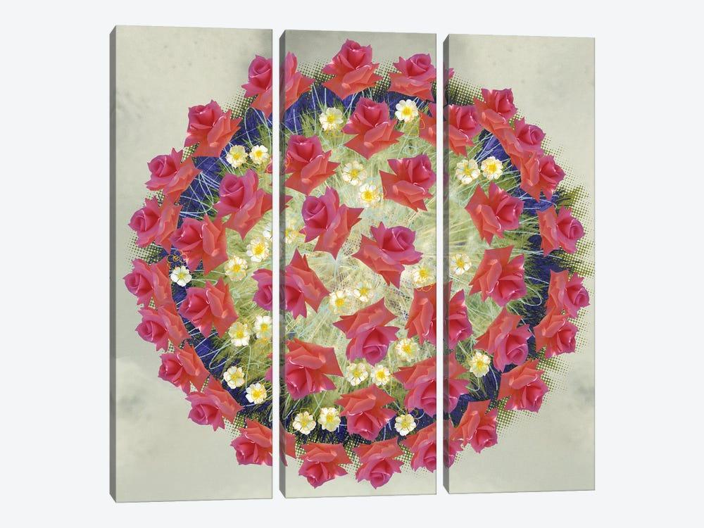 Corona Floris by Czar Catstick 3-piece Canvas Art