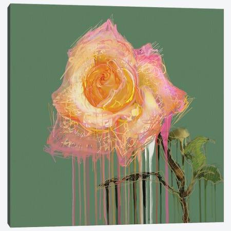 New Rose (on Green) Canvas Print #CZC84} by Czar Catstick Canvas Artwork
