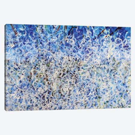 Abstract Underwater Effect Canvas Print #CZS48} by Carol Zsolt Canvas Art Print