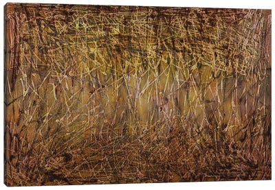 Looking Through The Dry Grass Canvas Art Print