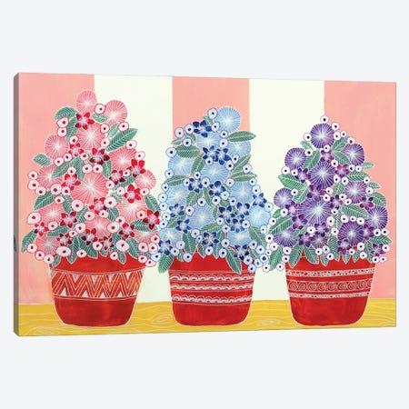 Three Flower Pots Canvas Print #CZS7} by Carol Zsolt Canvas Art