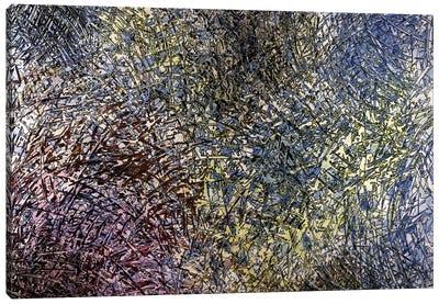 Burst Canvas Art Print