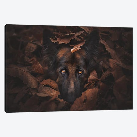 Camouflage 3-Piece Canvas #CZU111} by Cecilia Zuccherato Canvas Art Print
