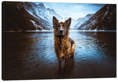 Queen Of The Lake Canvas Art Print