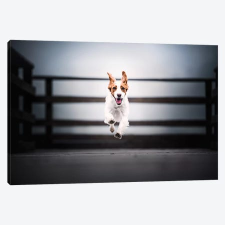 I'm Flying! Canvas Print #CZU59} by Cecilia Zuccherato Canvas Wall Art