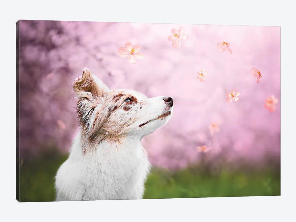 Spring Blossom by Cecilia Zuccherato 1-piece Canvas Art Print