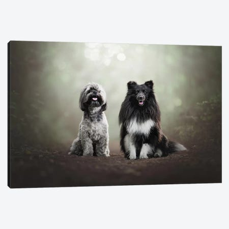 Two Little Rascals Canvas Print #CZU9} by Cecilia Zuccherato Canvas Print