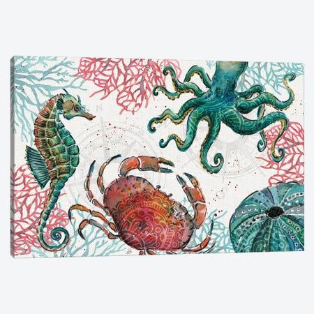 Ocean Finds I Canvas Print #DAB141} by Daphne Brissonnet Canvas Print