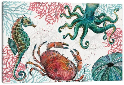 Ocean Finds I Canvas Art Print