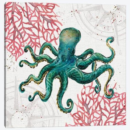 Ocean Finds III Canvas Print #DAB143} by Daphne Brissonnet Art Print