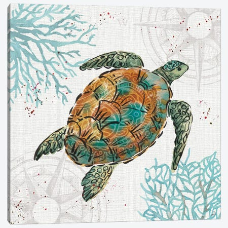 Ocean Finds IV Canvas Print #DAB144} by Daphne Brissonnet Canvas Wall Art