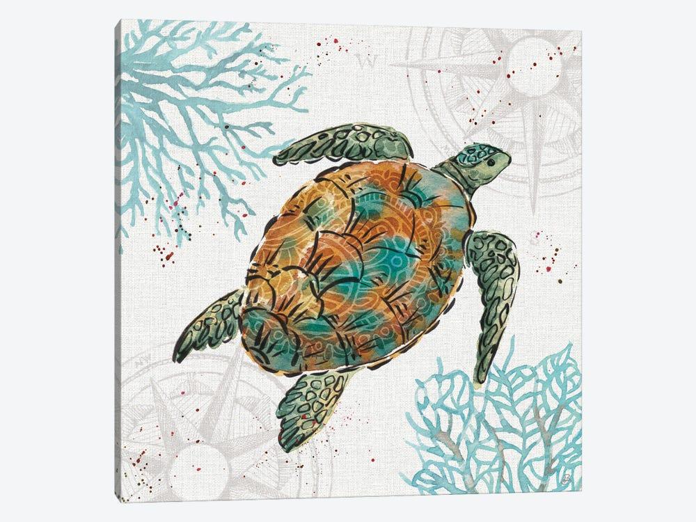 Ocean Finds IV by Daphne Brissonnet 1-piece Canvas Artwork