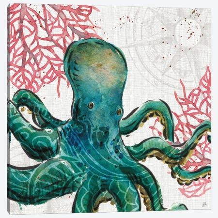 Ocean Finds IX Canvas Print #DAB145} by Daphne Brissonnet Canvas Wall Art