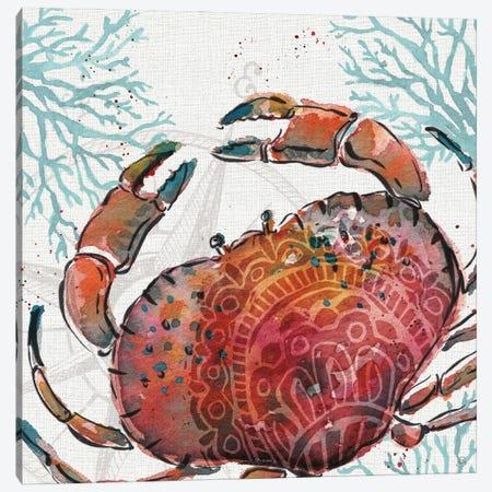 Ocean Finds VIII Canvas Print #DAB146} by Daphne Brissonnet Canvas Wall Art