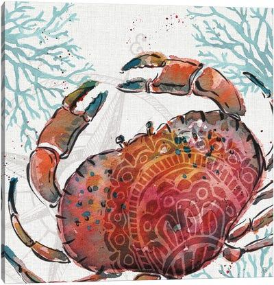 Ocean Finds VIII Canvas Art Print