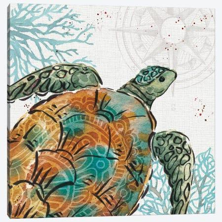 Ocean Finds X Canvas Print #DAB147} by Daphne Brissonnet Canvas Wall Art