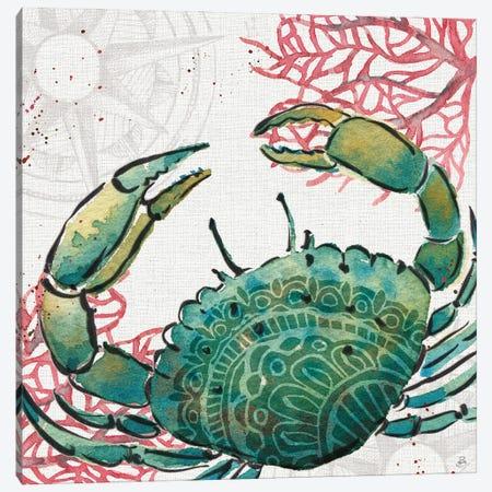 Ocean Finds XI Canvas Print #DAB148} by Daphne Brissonnet Canvas Print