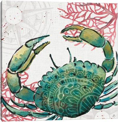 Ocean Finds XI Canvas Art Print