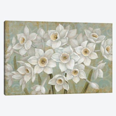 Pure II Canvas Print #DAB16} by Daphne Brissonnet Canvas Artwork