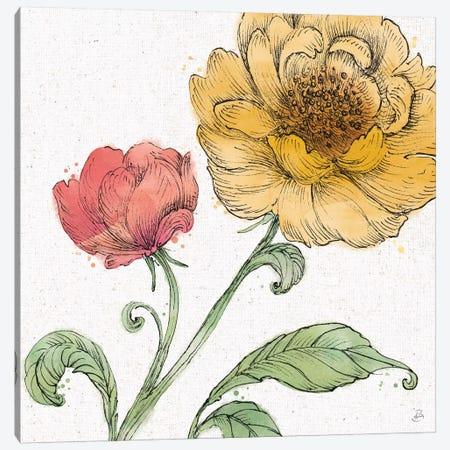 Blossom Sketches III Color Canvas Print #DAB75} by Daphne Brissonnet Canvas Art